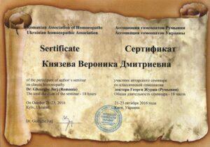 Диплом Князева Вероника Дмитриевна
